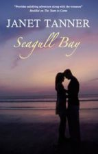 Seagull Bay