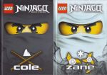 Lego: Ninjago: Masters of Spinjitzu (2 books)