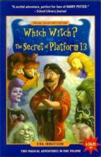 Which Witch? and the Secret of Platform 13