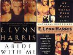 E. Lynn Harris Collection (2 books)