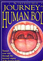 The Incredible Journey Through the Human Body