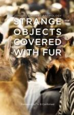 Strange Objects Covered with Fur