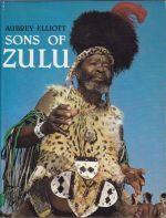 Sons of Zulu