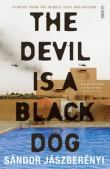 Devil Is a Black Dog