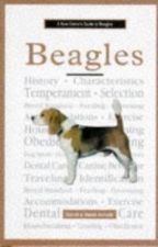 A New Owner's Guide to Beagles