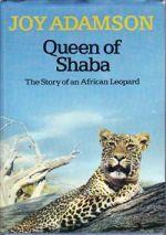 Queen of Shaba