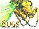 Bugs; The Word's Most Terrifying Insects