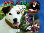 Wishbone Adventure Pack #1